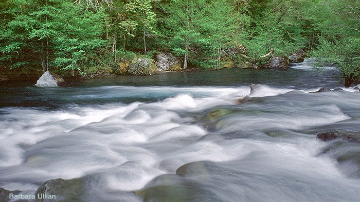 National Wild and Scenic North Fork Smith River and Baldface Creek.