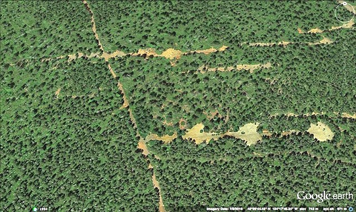 A closer look at the decades old mineral exploration scars at Red Flat in the Hunter Creek and Pistol River Mineral Withdrawal Area. Google Earth image.