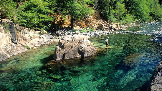 Baldface Creek's waters are startling clear (Barbara Ullian photos)