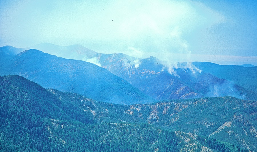 Kalmiopsis Wilderness fire 1994