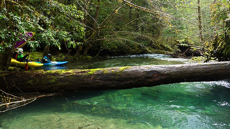 North Fork Smith River, Oregon's first Outstanding Resource Waters