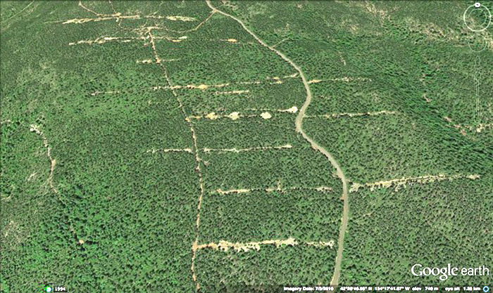 Scars from mineral exploration last for many decades on the fragile serpentine terrain of the Hunter Creek and Pistol River Headwaters mineral withdrawal area. Google Earth image.